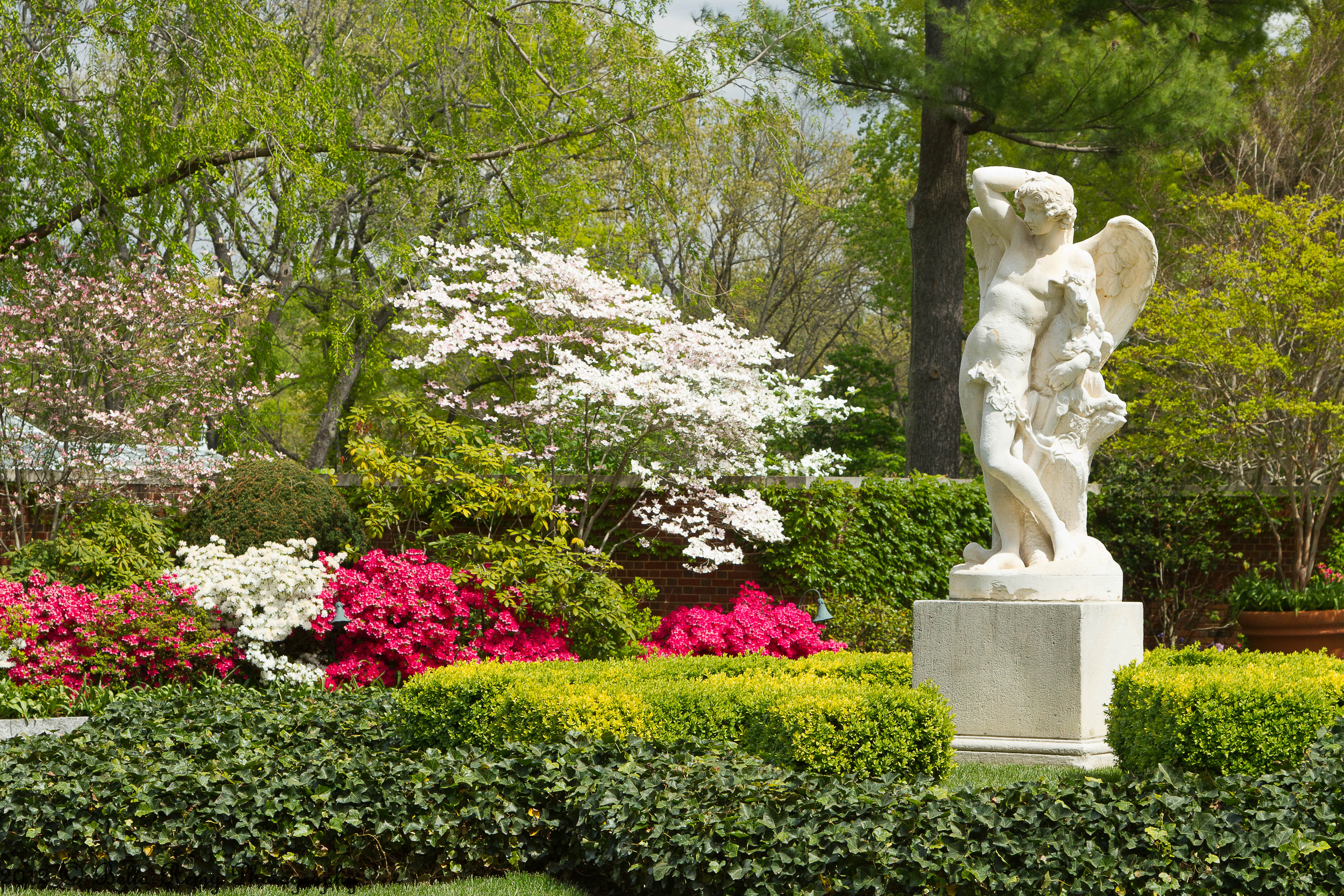 Spring at hillwood estate museum gardens emily carter for Decoraciones jardines