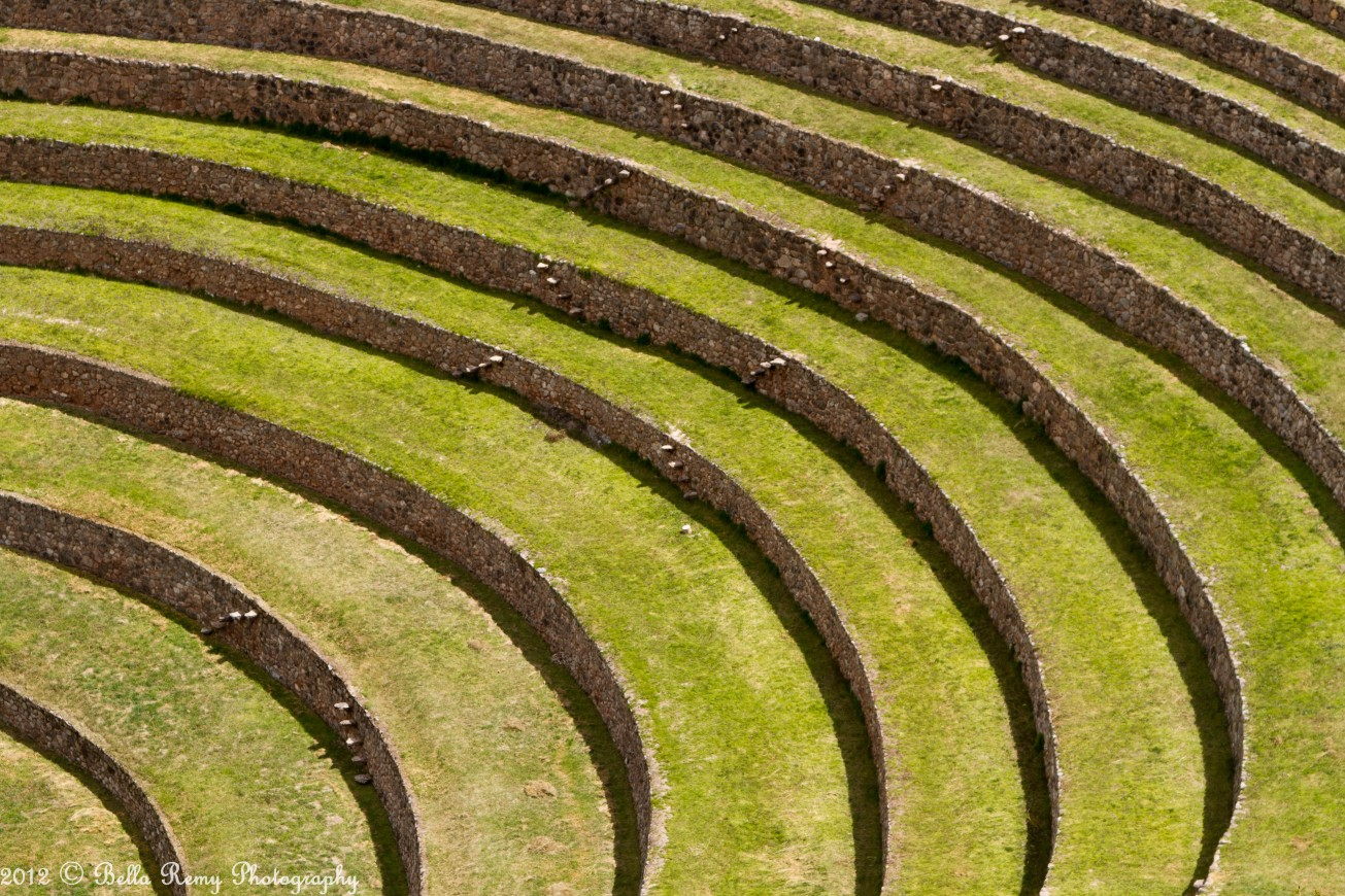 Moray an inca farmer s paradise hoof beats and foot prints for Terrace farming definition