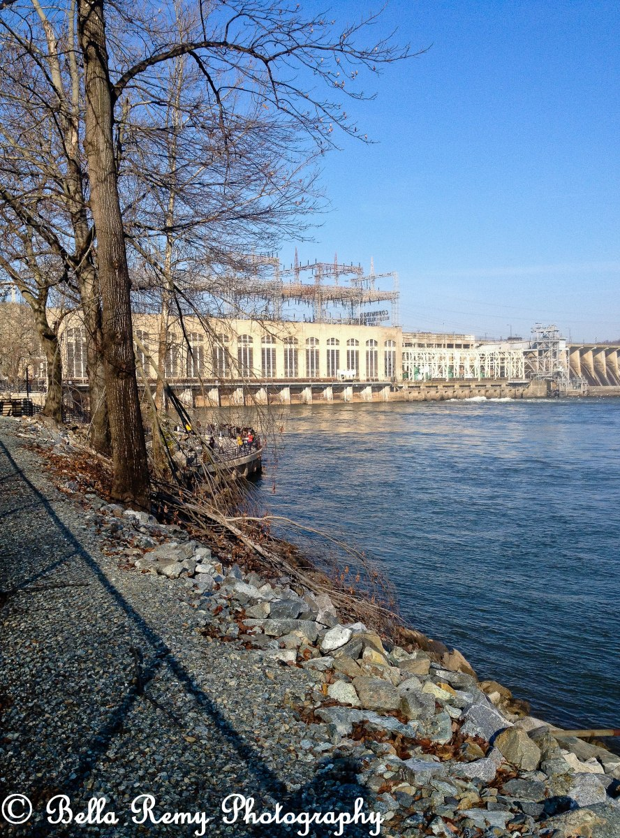 A Visitor's Guide to the Bald Eagles at Conowingo Dam