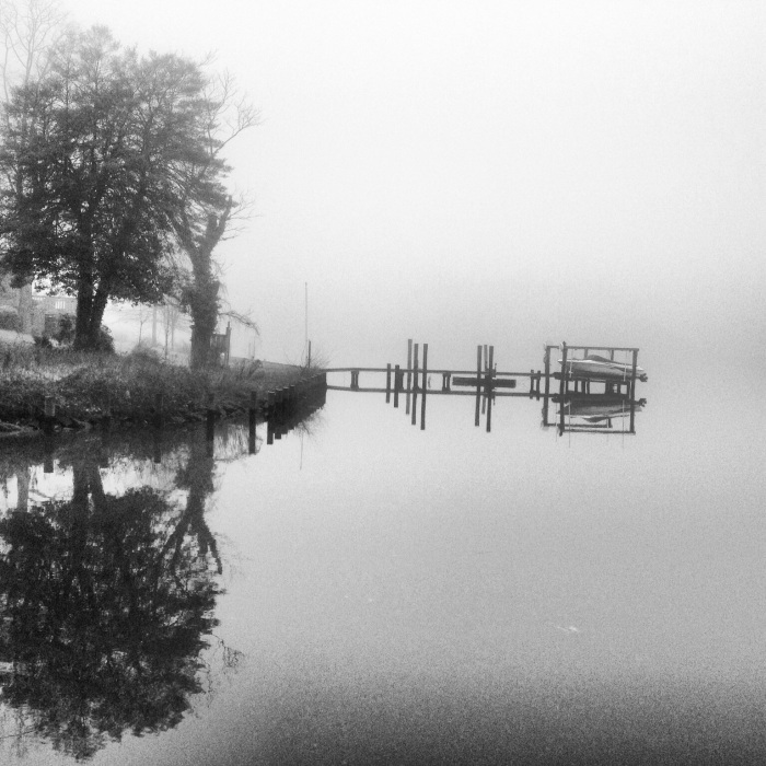Fog on the Docks