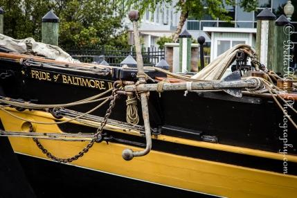 Boats14may13-4867