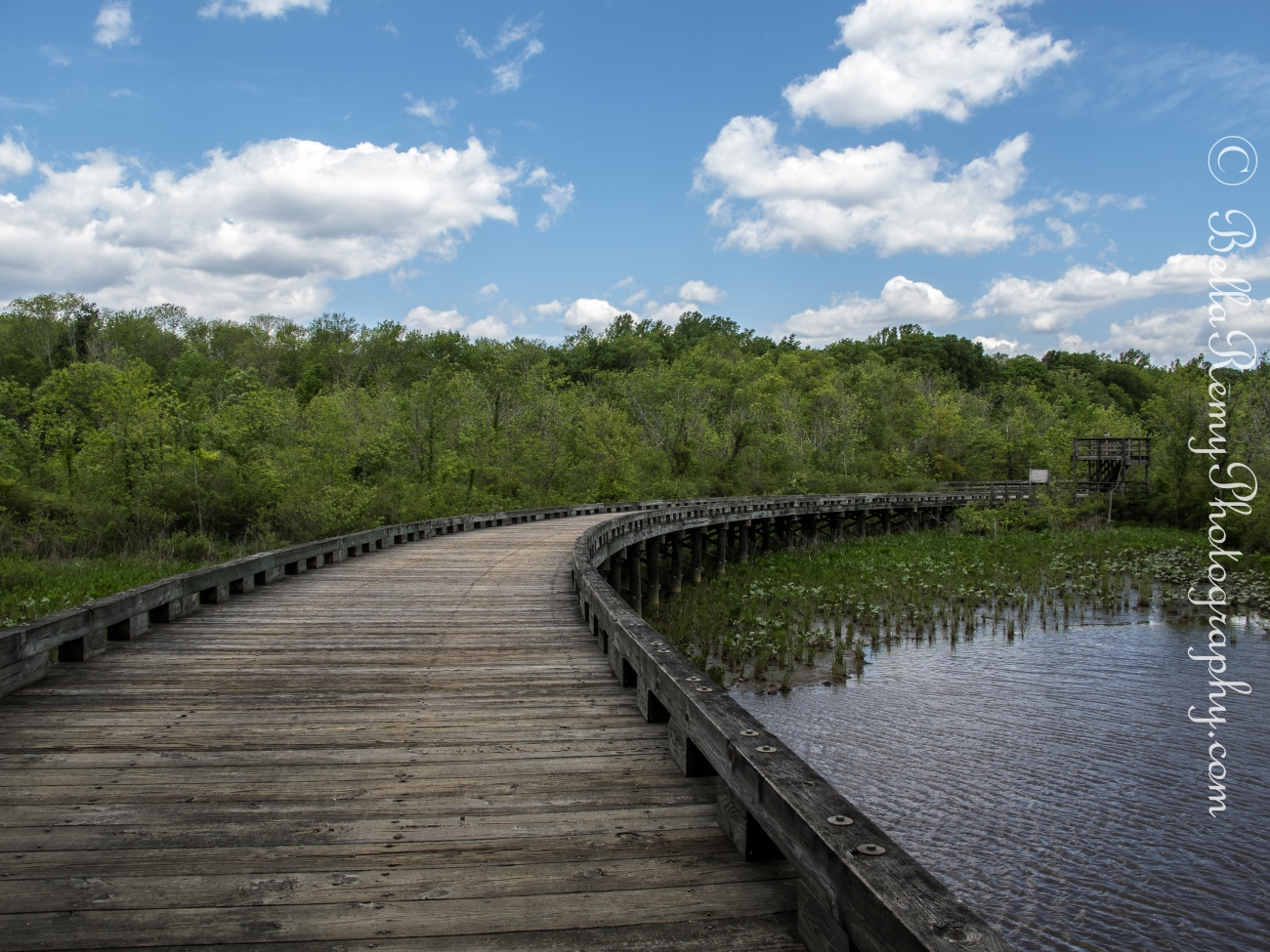 Bridge leading from Merkle Wildlife Sanctuary to Patuxent River Park