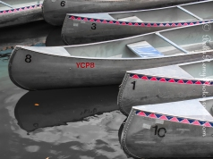 Canoes and Kayaks are available for rent