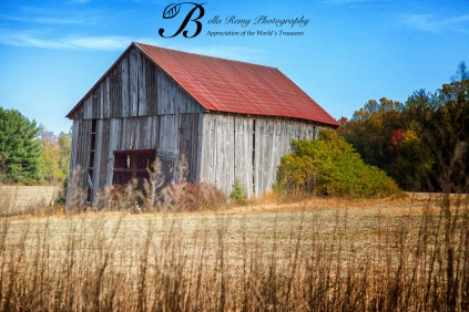 Go in search for the perfect barn in autumn's colors.