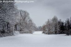 Snow17mar14-9839