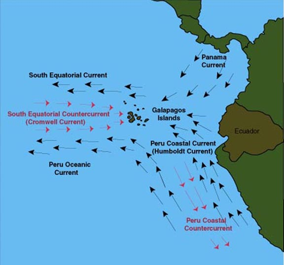Source: http://www.srh.noaa.gov/jetstream//tropics/itcz.ht