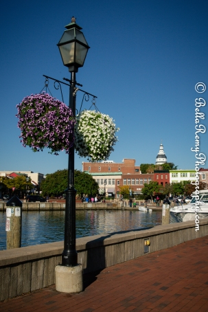 Annapolis5oct14-9647